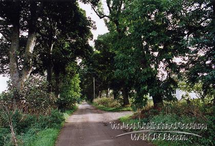 http://lostdistillery.com/photos/braelangwell01.jpg