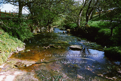 http://lostdistillery.com/photos/geise05.jpg