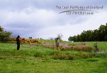 http://lostdistillery.com/photos/ryefield07.jpg